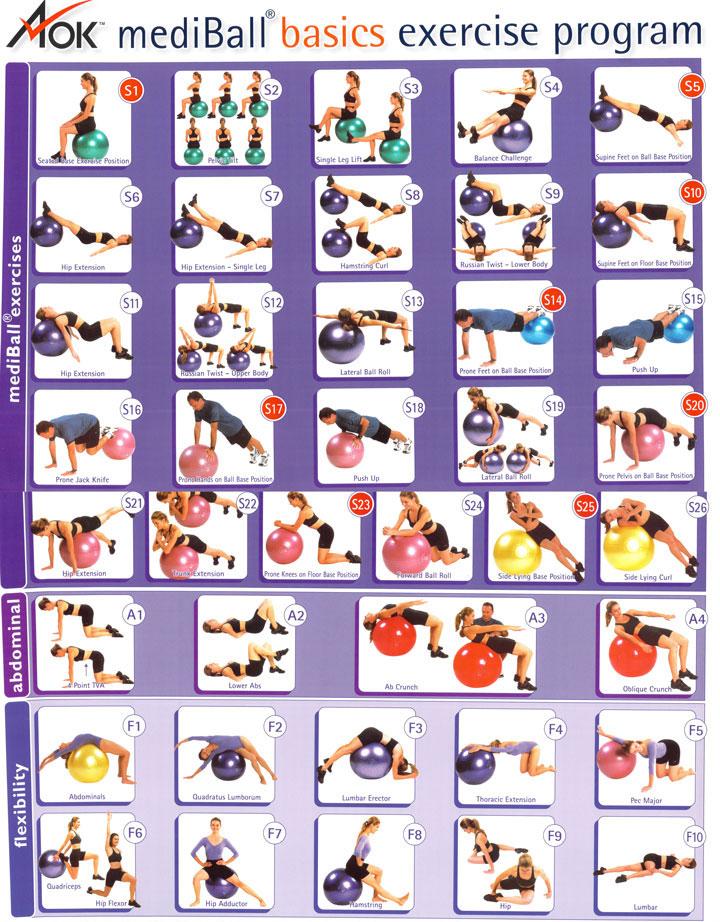 Exercise ball chart