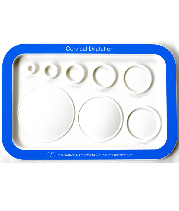 Moulded plastic dilatation chart birth international