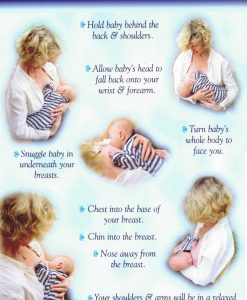 Positioning the Key to Successful Breastfeeding Chart
