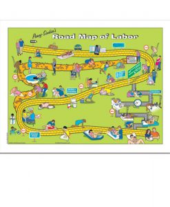 Penny Simpkins Road Map of Labour Tear Pad