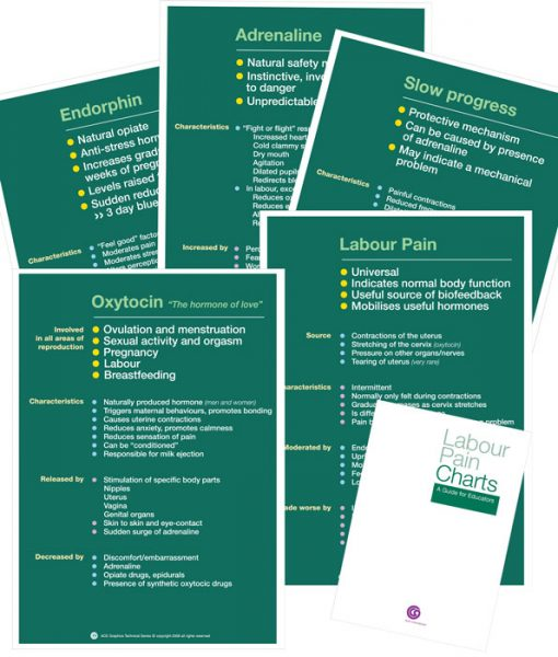 Labour Pain set of 5 charts
