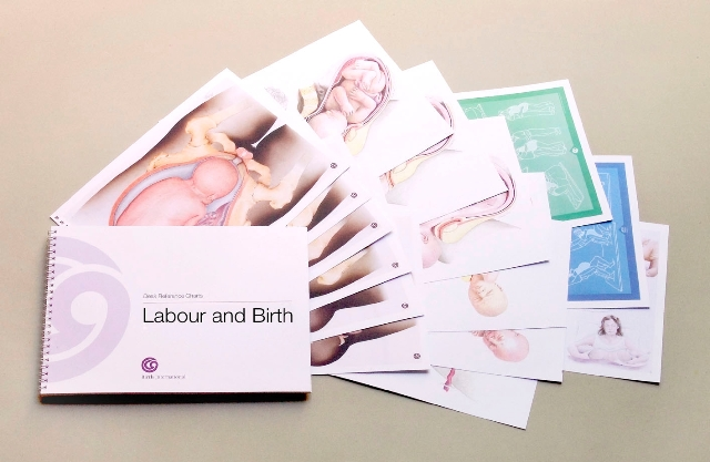 Labour and Birth Desk Set