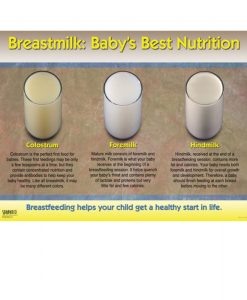 Breastmilk – Baby's Best Nutrition Chart