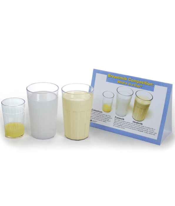 TA047 Breastmilk Composition - What's In A Day Display