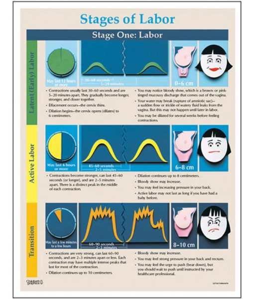 Stages of Labour Tear Pad