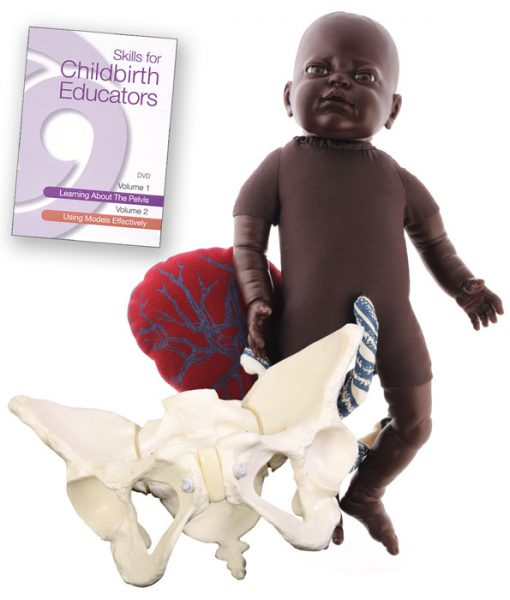 Fetal Doll Brown with Placenta, Deluxe Flexible Pelvis Model and Skills for Childbirth Educators DVD
