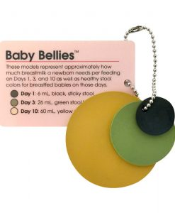 Baby Bellies Pocket Model Key