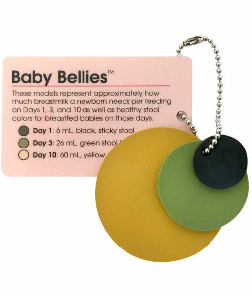 Baby Bellies Pocket Model Key