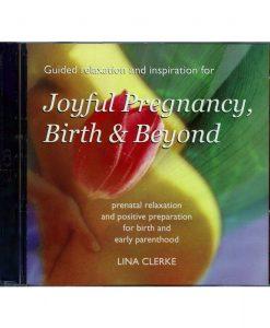 Joyful Pregnancy Birth and Beyond Relaxation
